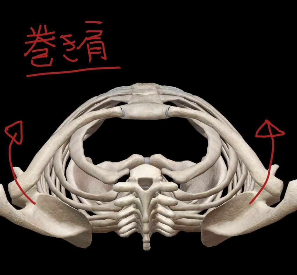 巻き肩の図